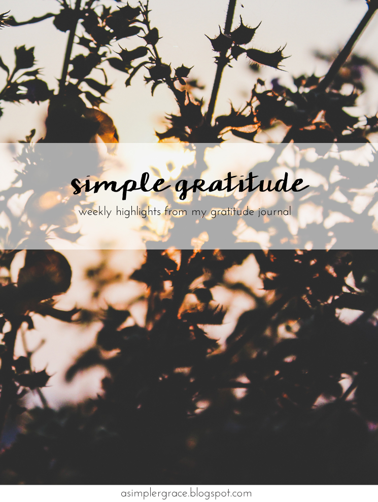 Sharing my #gratefulheart on the blog this morning! #gratitude