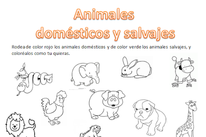 Dibujos De Animales Domesticos Y Salvajes Para Colorear