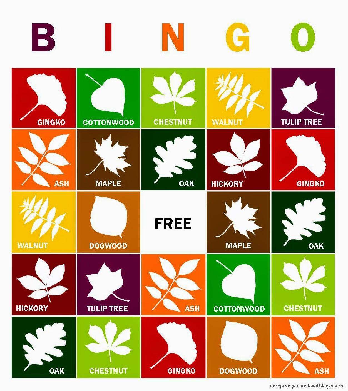Relentlessly Fun Deceptively Educational Fall Leaves Bingo