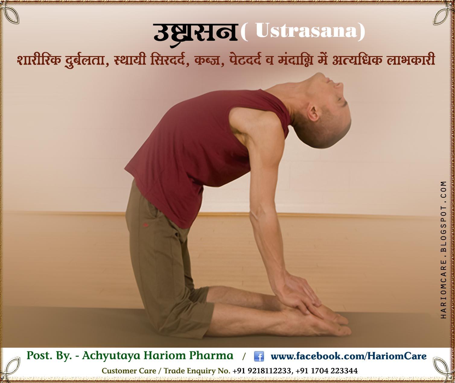 उष्ट्रासन( Ustrasana) ~ Hariom Care