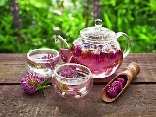 remedios caseros trebol rojo para los sofocos en menopausia