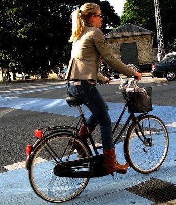 I Danesi E La Bicicletta Danimarca Per Tutti