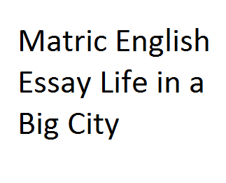 Matric English Essay Life in a Big City