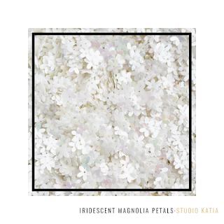 Iridescent Magnolia Petals