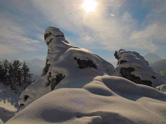 Rogi oblepione śniegiem.