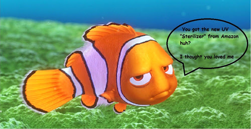 Aquarium or Pond UV Sterilizer Problems, Nemo sarcasm