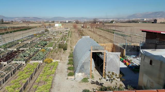 Granada; bancales; agricultura ecológica; agroecología