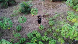 Drone Videografi