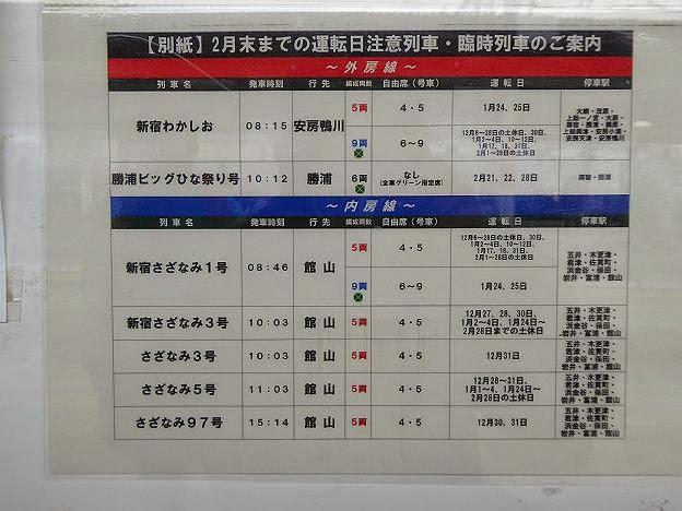 さざなみ 館山行き E257系側面表示