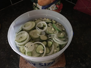 Refrigerator dill pickles recipe