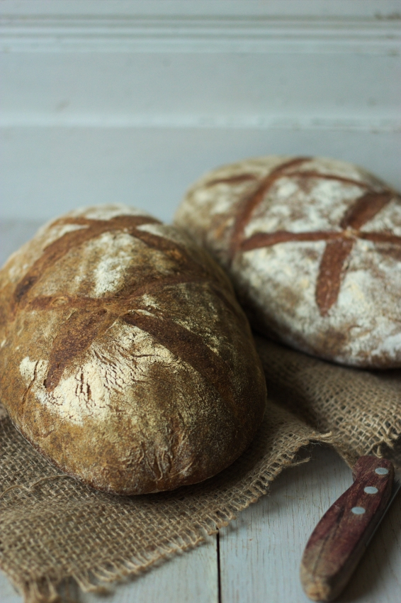 bread day How to dry out bread don't have day-old bread here's how to fake it march 11, 2018 by nicole perry 822 shares chat with us on facebook messenger.