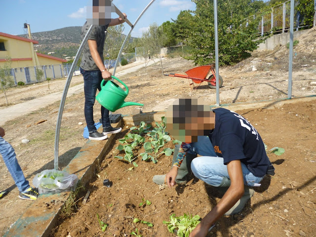 Λαχανόκηπο και οπωρώνα δημιούργησαν οι μαθητές του  Ενιαίου Ειδικού Επαγγελματικού Γυμνασίου - Λυκείου Αργολίδας