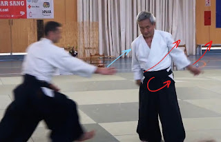 shihonage ushiro ryokatadori
