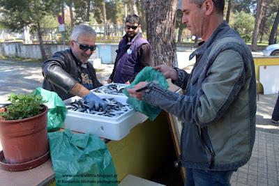 Διανομή ψαριών στην Λαϊκή Επιτροπή Κατερίνης.