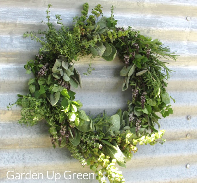 You'll find the directions for this lovely herb wreath at Garden Up Green . Image used with permission.