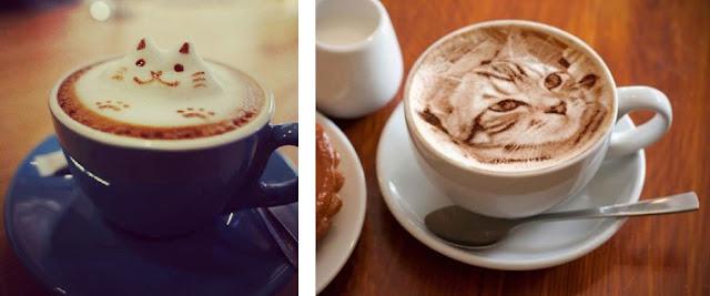latte art, kocie kawiarnie