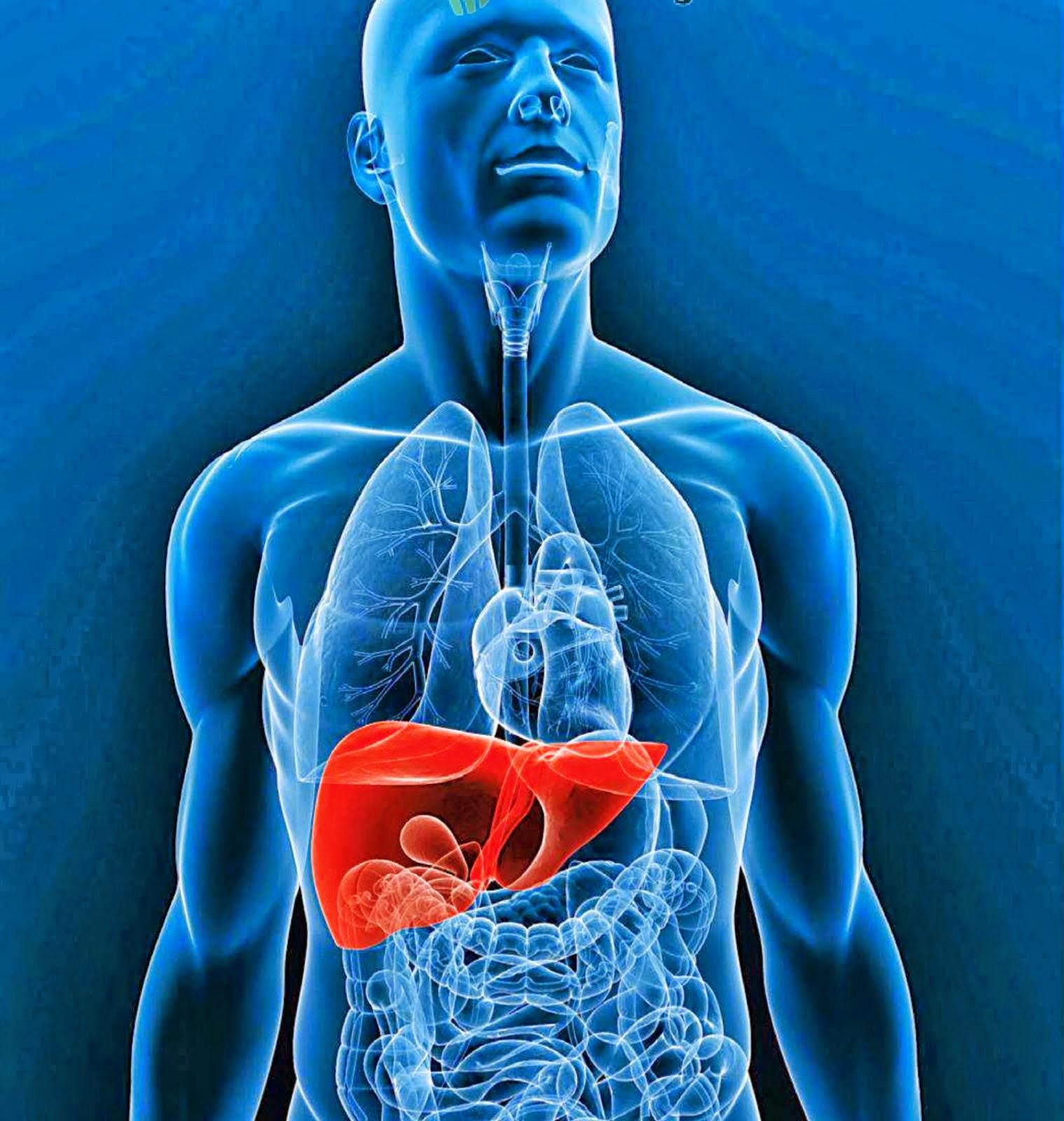 Cuidado, La Hepatitis B Es Cien Veces Más Contagiosa Que