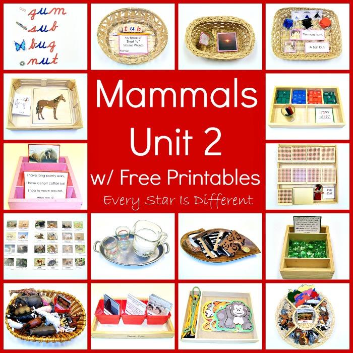 Mammals Unit 2