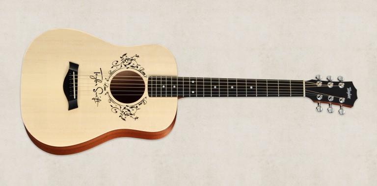 dan guitar taylor