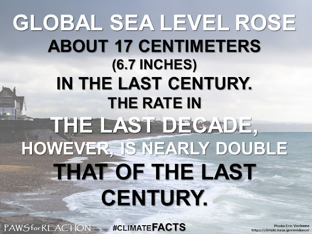 Climate change facts