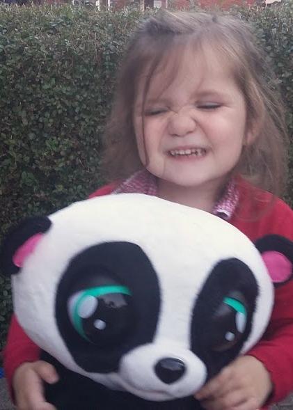 Club Petz YoYo the Panda - Review