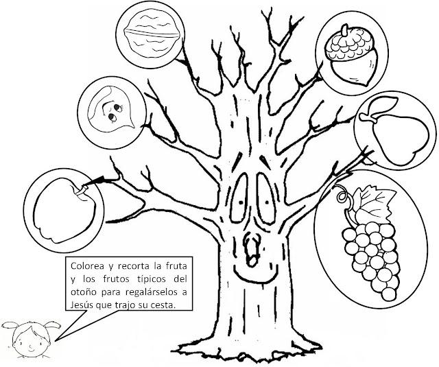 Frutos De Otoño Para Colorear Imagui
