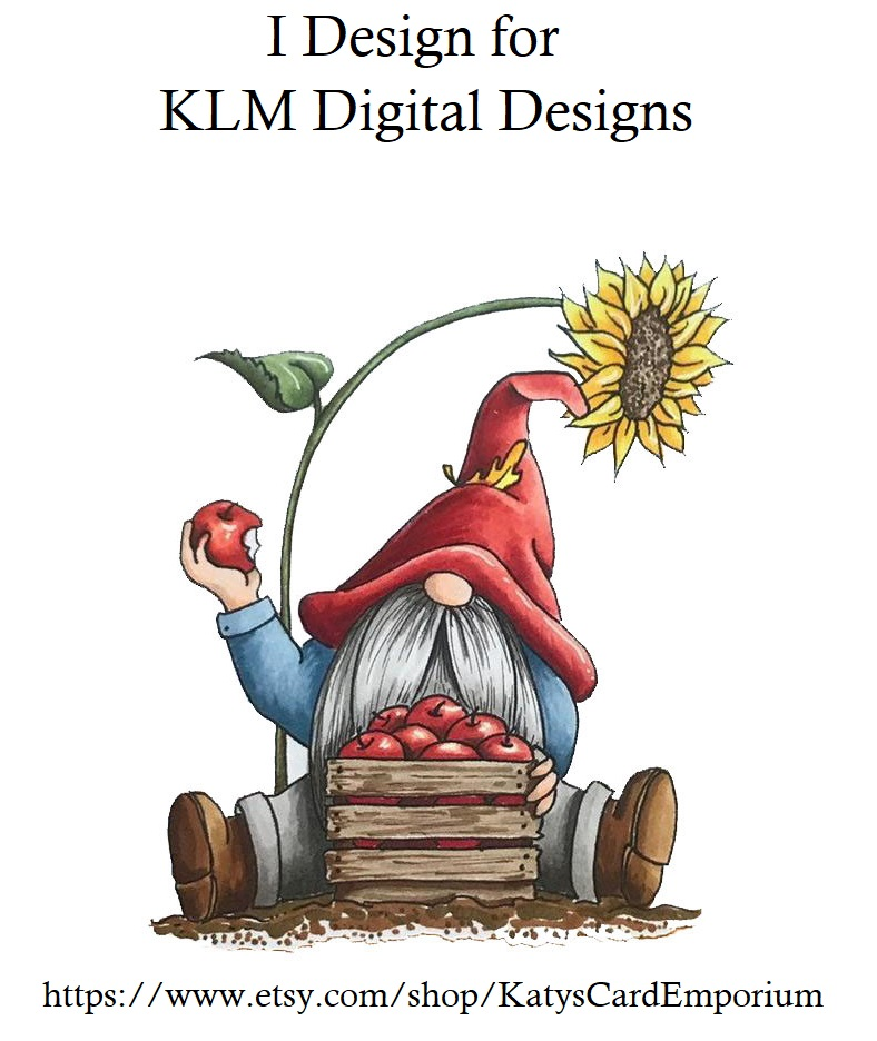 KLM Digital Designs