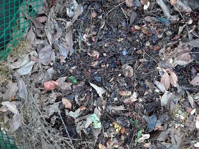 usare il compost nell'orto biologico