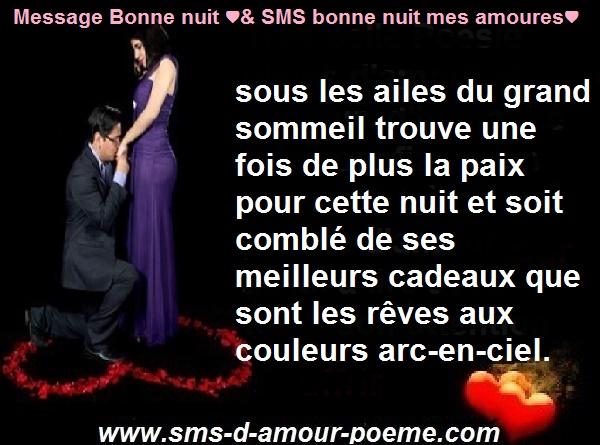 Image avec message Bonne nuit mon amour, photo de bonne nuit romantique