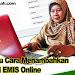 Tutorial atau Cara Menambahkan PTK Baru di EMIS Online
