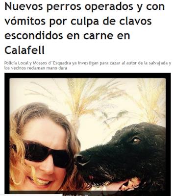 http://www.diaridetarragona.com/costa/75382/nuevos-perros-operados-y-con-vomitos-por-culpa-de-clavos-escondidos-en-carne-en-calafell-