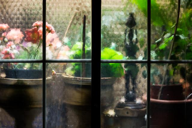 'Jardín secreto' f/2.8 - 1/15. - ISO200. Canon EOS 60D, 35mm f2