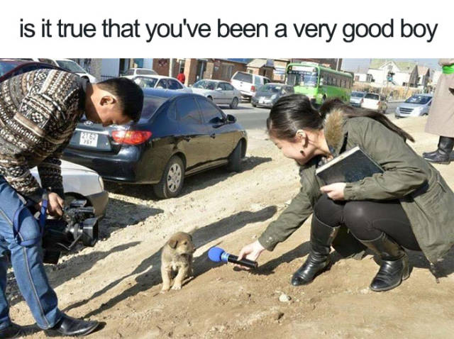 Is it true that you've been a very good boy.