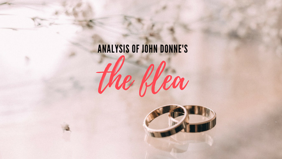 The Flea by John Donne- Analysis