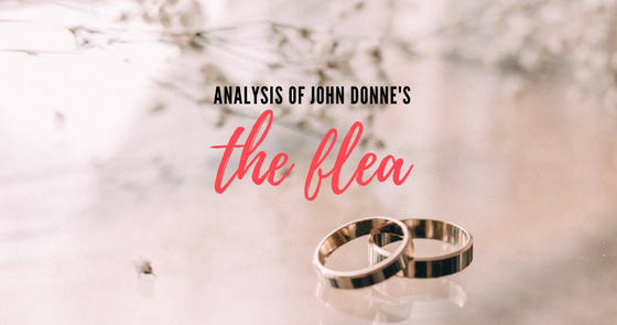 an analysis of the use of metaphors in the poem the flea by john donne Analysis of the flea by john donne essays observe a typical bar every saturday   in this clever poem donne uses a flea, blood, and the murder of the flea as an  analogy for  the metaphors in the flea are plentiful, but the symbols repeated .
