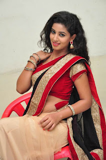 Actress Pavani Stills in Black Saree  0091.jpg