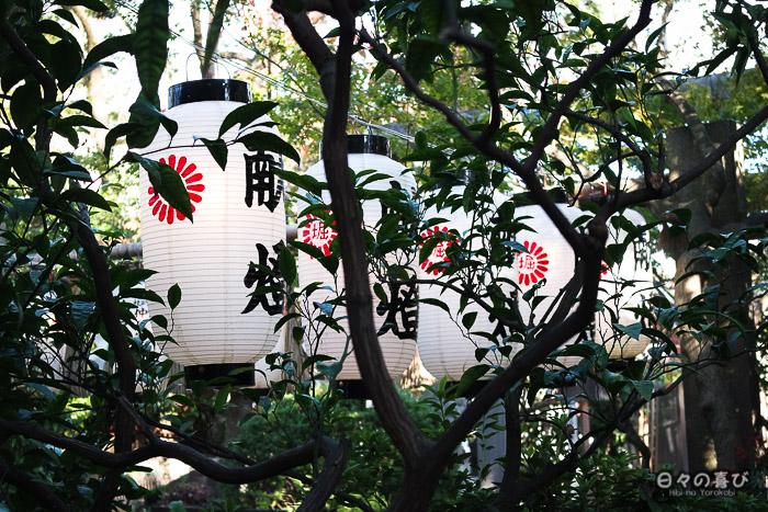 Lanternes dans le sanctuaire Horikoshi, Tennôji, Osaka
