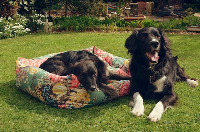 Joules-pet-beds
