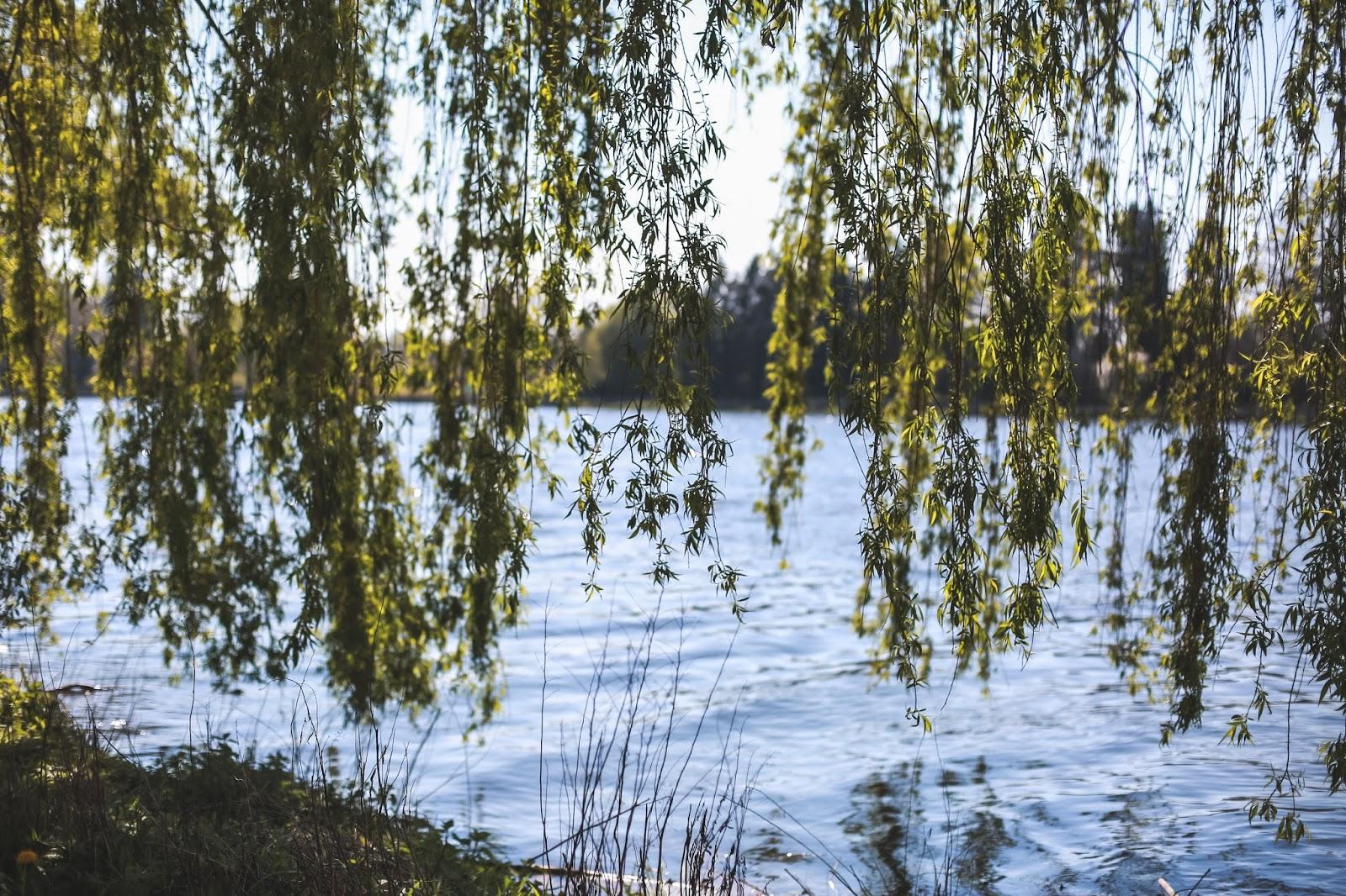 lac vichy