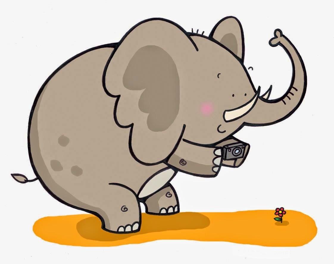 Gambar Kartun Binatang Gerak
