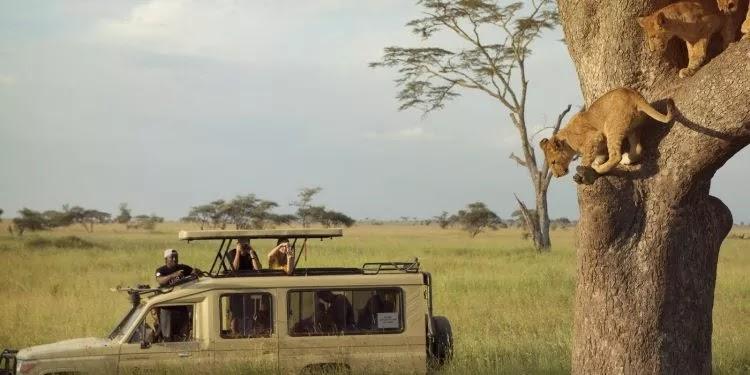 TANZANIA YASHINDA NA KUWA NCHI BORA ZAIDI KWA UTALII AFRIKA 2017
