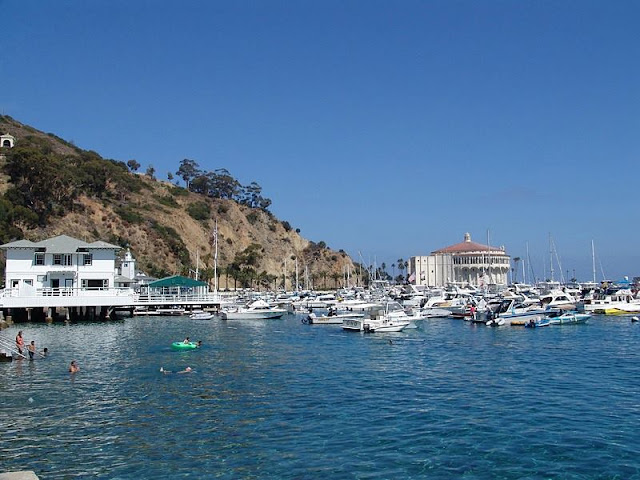a picture of harbor and cliff at Santa Catalina Island