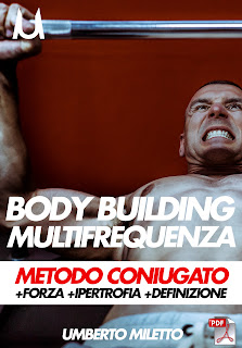 schede online body building miletto