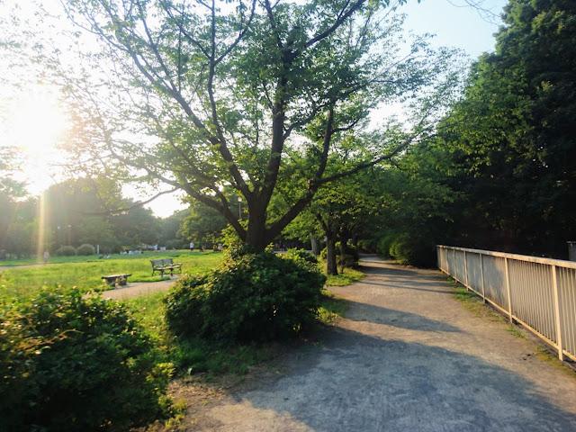 神田川 三角公園