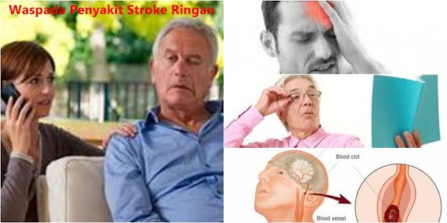 obat herbal yang ampuh untuk mengatasi stroke ringan sampai sembuh