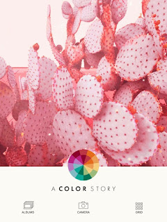 A Color Story App | A Relaxed Gal