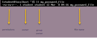 Linux file permissions and ownership