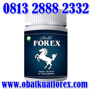 obat kuat forex