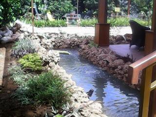 Jasa pembuat kolam ikan koi batu karang