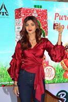 Bollywood Actress Shilpa Shetty Stills in Tight Jeans at Launch Of   0002.jpg